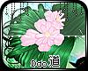 -Dao; Spring Hairbuns