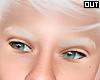 white !Eyebrow