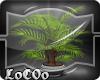 [LOC] Planta Radio Geko