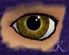Citrine Eye M