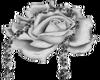 Silver Flowers-R