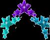 Purple & Teal Stars