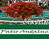 [M] Patio Andaluz Clavel