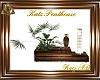 AD! Katz Penthouse Plant