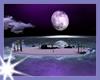 Ay_Night Beach Isle