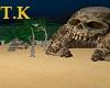 T.K   Pirates Island