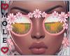 *M* Branda Sunglasses