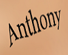 tatoo Anthony