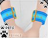 [Pets] Wristcuff   blue