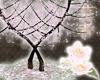 *BRWH* Yume Sakura