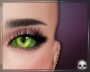 [T69Q] Lady Noir Eyes