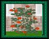 (WW)ORANGE ROSE BUSH
