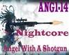 Angel With A Shotgun