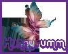 ~H~ Beautiful Butterflys