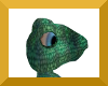 Anyskin frog
