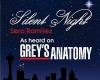 Slient Night - Grey's An