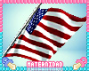 M. USA 4th Flag
