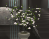 C~ Planter (Flowers)