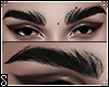S. BOLD BROWS