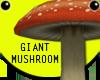 Giant Mushroom Toadstool