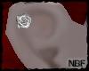 Rose cartil. earp.