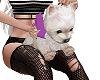 eDe Pink Puppy