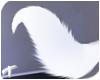 Foxy | Tail