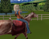 Horse Training Ranch