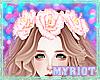 Myriot'PinkHybridRose