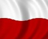 Polish flag * animated