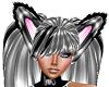{cmm} bl n s ears