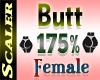 Butt / Hip Resizer 175%