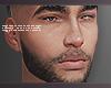 Beard + Eyebrows V2
