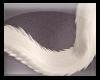 [R] Plat Cat Tail