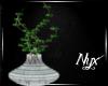 {N} :Lani:  Vase