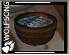 WS ~ Pagan Water Dish