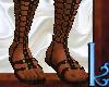 Roman Sandals V.1 Br/G