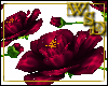 Floor Roses Burgundy