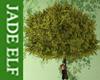 [JE] The Bards Tree