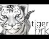 Tiger W/B