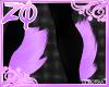 Kitz | Limbs