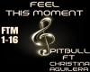 -Feel This Moment-