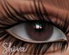 $ Lola Brown Eyes