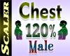 Chest Resizer 120%
