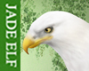[JE] Eagle White