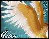 G: Gryph wings