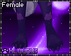 *LY*Astird Moon Paws F