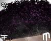 Youngin Curls - Purple