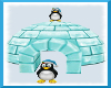 igloo penguins