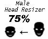 Scaler Head 75%